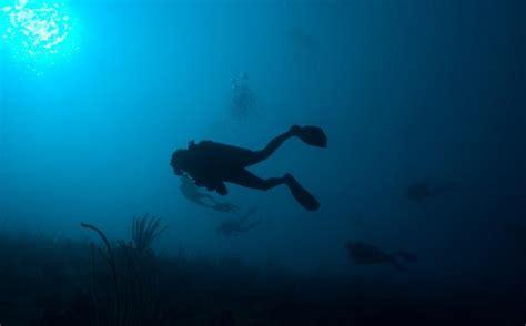 dive a scuba diving centers and diving