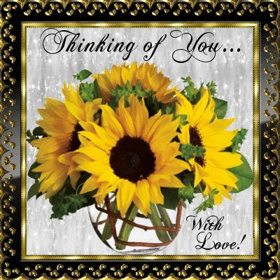 August Flowers Cards, Free August Flowers Wishes, Greeting