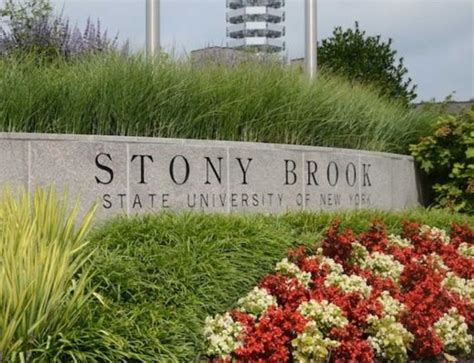 Stony Brook Columbia Mba Linkedin by Stony Brook Wins 1m Grant For Low Emission