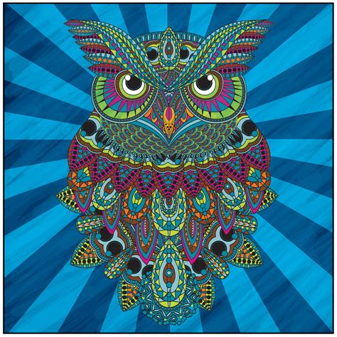 what color are owls owls coloring book with relaxation cd color with