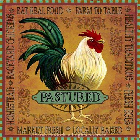 imagenes vintage gallinas mejores 84 im 225 genes de gallinas en la cocina en pinterest
