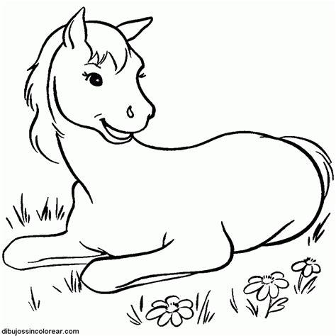 imagenes para dibujar sin color 15 dibujos de caballos bebes para colorear
