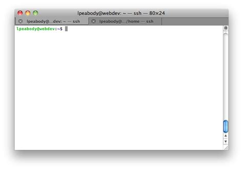 grep pattern in xml file download bash output to file overwrite free berlinfiles