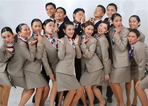 cabin crew entry requirements aviation pal express cabin crew recruitment