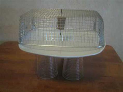 gabbia di faraday esperimento esperimenti scienze gabbia di faraday g