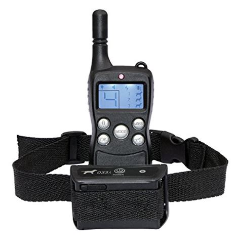 how to a with a remote collar remote collar petsmart how to stop your from their to keep