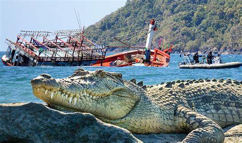 refugee boat north queensland australia migrants flee into crocodile infested mangroves