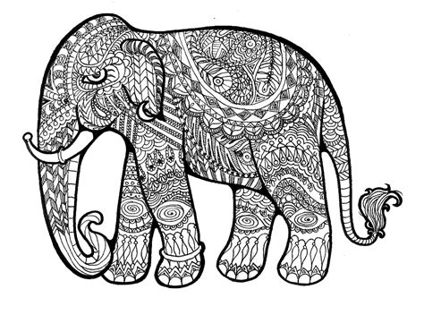 drawing for adults elephant drawing 3d drawing