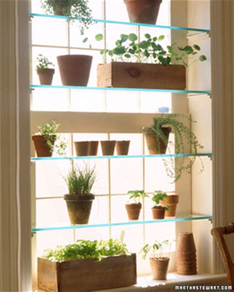 indoor window garden greenhouse window garden club