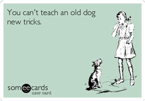 you can t teach an new tricks you can t teach an new tricks animated text ecard