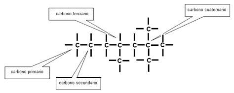 cadenas carbonadas abiertas y cerradas 2 2 cadenas carbonadas