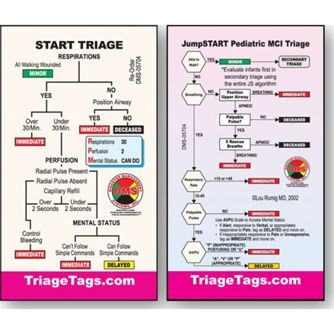 start triage flowchart algorithm and flowchart to display best free home
