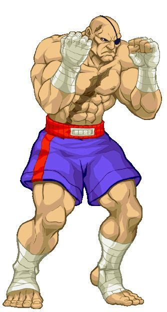 17 Best images about Street Fighter on Pinterest   Street fighter 2, Sagat street fighter and