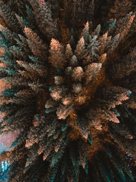 Drone Photo the skypixel drone photo contest showcases the best aerial photography gallery