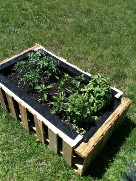 1000 images about worms on pinterest raised beds weed and worm composting