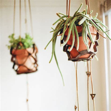 Diy Plant Hangers - diy project leather plant hanger design sponge