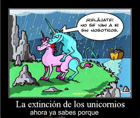 imagenes de unicornios chistosas extinci 243 n unicornios