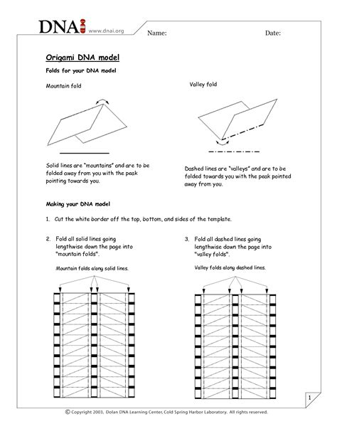 Dna Origami Template - 12 best images of dna model cut out worksheets dna model