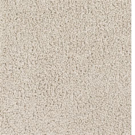 shop dixie trusoft pomadour beige almond textured interior carpet at lowes