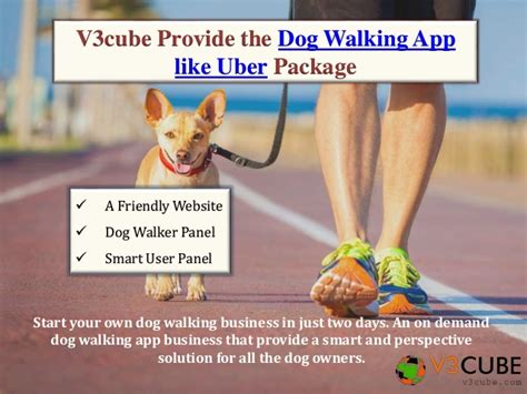uber for walking uber for walking
