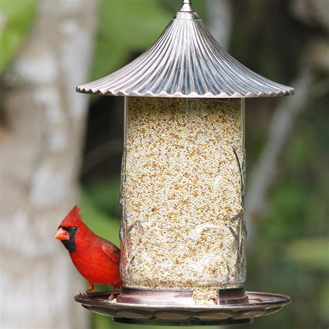 large capacity tube bird feeders bird cages