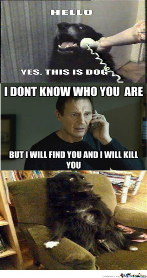 Dog Phone Meme - hello memes funny image memes at relatably com