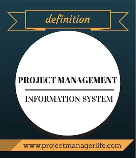 biography project definition definition project management information system