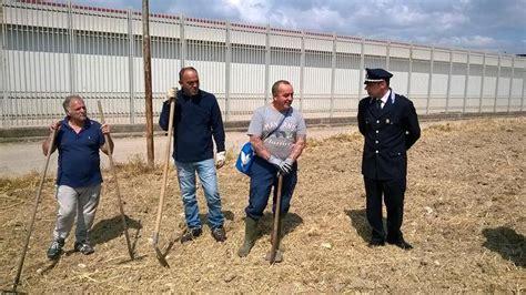 canapé marcello canapa industriale canapa in carcere a taranto la