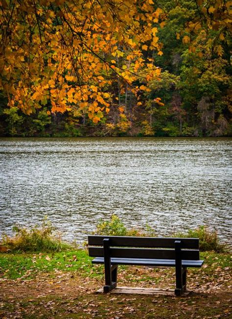 park bench theories 25 beautiful park benches ideas on pinterest sunrise