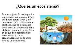 el eco de los trabajo de los ecosistemas biolog 237 a 4 186 eso a