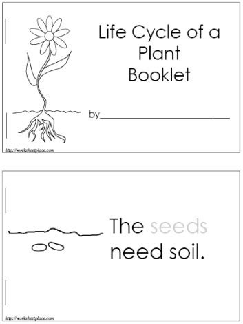 free printable animal life cycle worksheets life cycle of a plant booklet free can make it into a