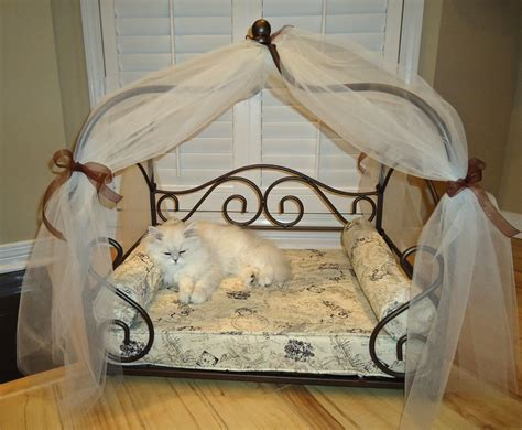 fancy cat beds fancy cat beds pin by stacey delucia on adorable pet beds