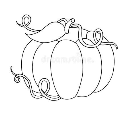 clipart bianco e nero in bianco e nero zucca illustrazione di stock