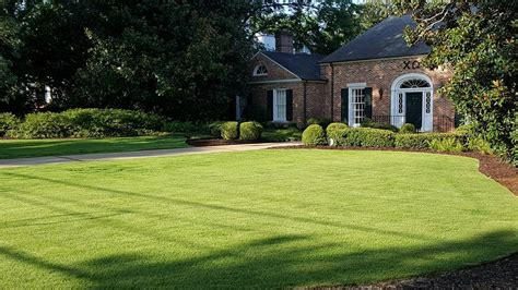 Landscape Design Athens Ga Landscapers And Lawn Care In Athens Ga College Pro