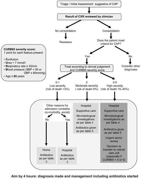 pathophysiology of pneumonia diagram pathophysiology of community acquired pneumonia schematic