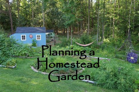 planning a backyard garden the backyard farming connection planning your homestead