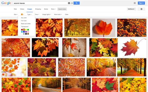 color from image how to search for images by color html color codes
