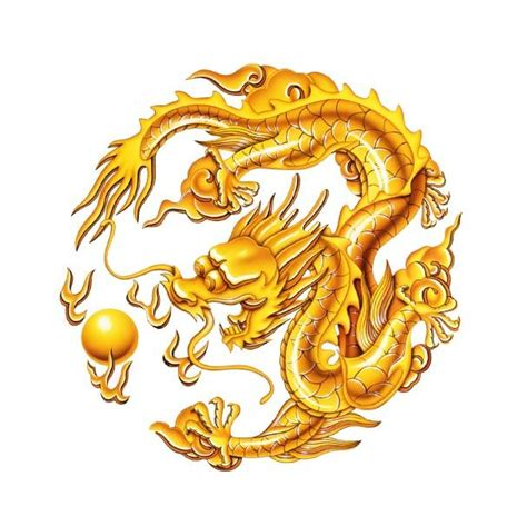 golden dragon tattoo drawings of dragons slideshow