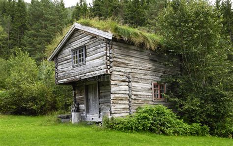 haus norwegen bauen sie historisches haus in norwegen mit gras auf roo