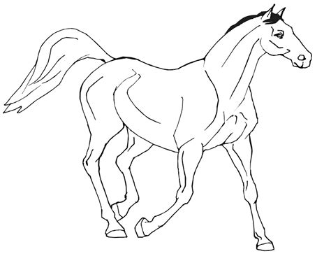 coloring pages of flying horse free printable horse coloring pages az coloring pages
