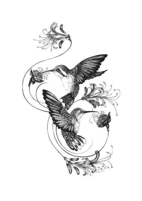 hummingbird rose tattoo image result for honeysuckle and hummingbird tattoos vine
