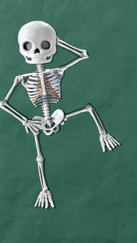images  skeletal system bones  pinterest