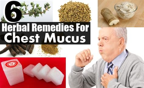 chest mucus herbal remedies treatments and cure