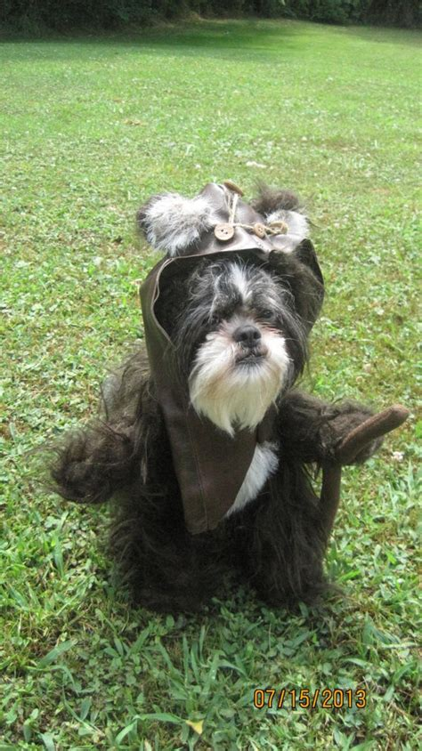 ewok costume for ewok costume for your