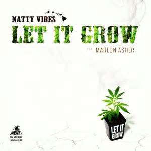 Ganja Planter Mp3 by Natty Vibes New Single Ft Marlon Asher 171 The Pier Magazine