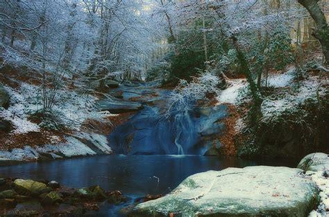 imagenes naturaleza invierno oto 241 o invierno en el montseny imagen foto naturaleza