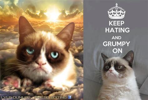 Grumpy Cat Wedding Meme - l angolo delle curiosit 224 4 grumpy cat con la realidad