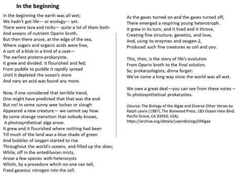 biology poems a poem about the evolution of photosynthesis by