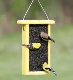 Bird Feeder Recycled Plastic Bird Feeders Milk Jug Eco Friendly