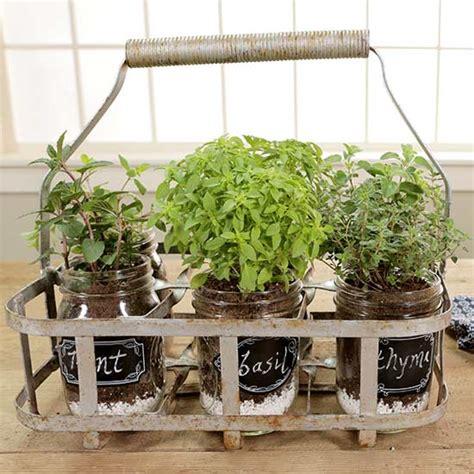 portable herb garden portable indoor herb garden